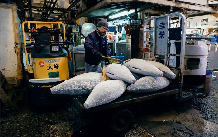 Рыбный рынок. Токио